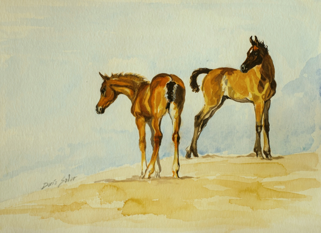 Arabian fouls watercolour on paper about 30x40 Daria Solar 2016 edit