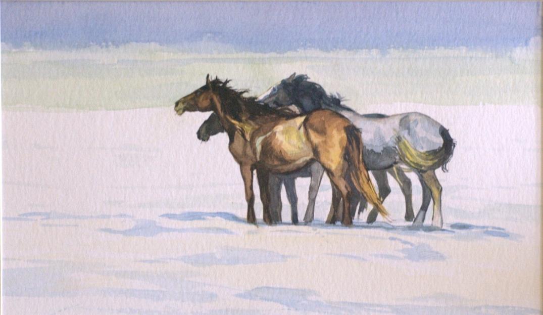 wild horses atercolour on paper Daria Solar 2016